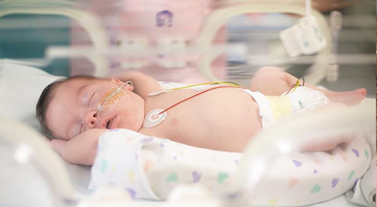 uci neonatal lasalud